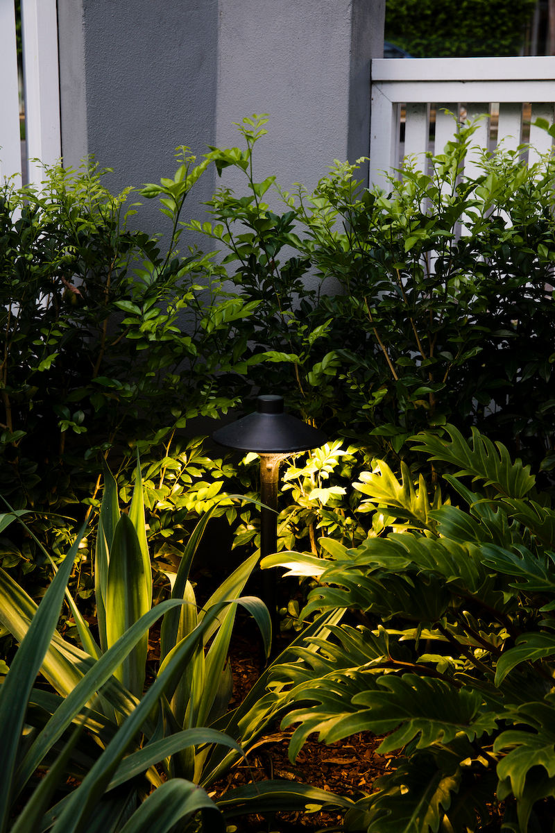 FrontGardenDesign-Night-Light-Plants