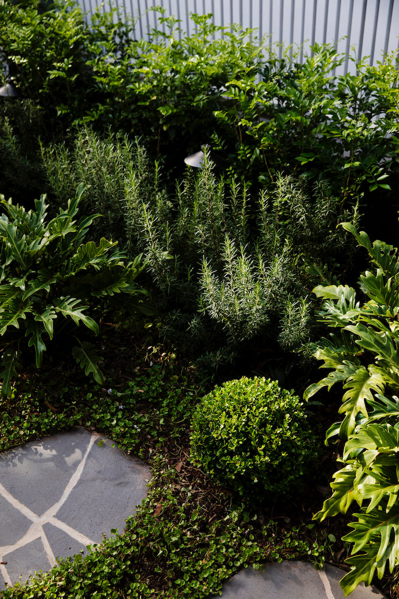 FrontGardenDesign-Plants-Pavers-WhiteFence